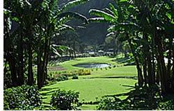 Jouant de golf sous les tropiques est une expérience unique